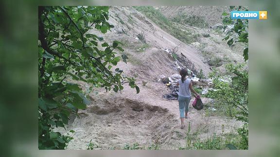 Как ловят тех, кто мусорит в гродненских лесах?