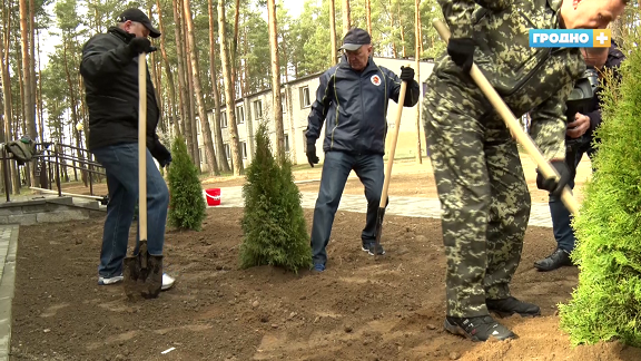 Подготовка детского лагеря и сакура под окнами – как прошёл республиканский субботник в Гродно