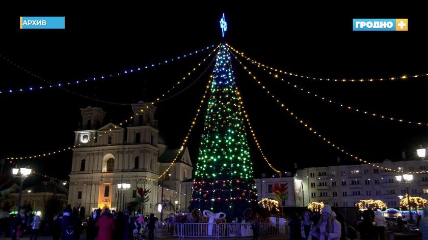 С четверга в Гродно начнут убирать елки